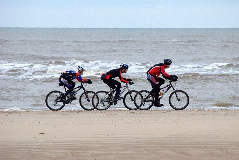 fahrrad fahren und mountainbiken durch die d nen von bergen aan zee. Black Bedroom Furniture Sets. Home Design Ideas