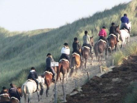 paardrijden - Afbeelding